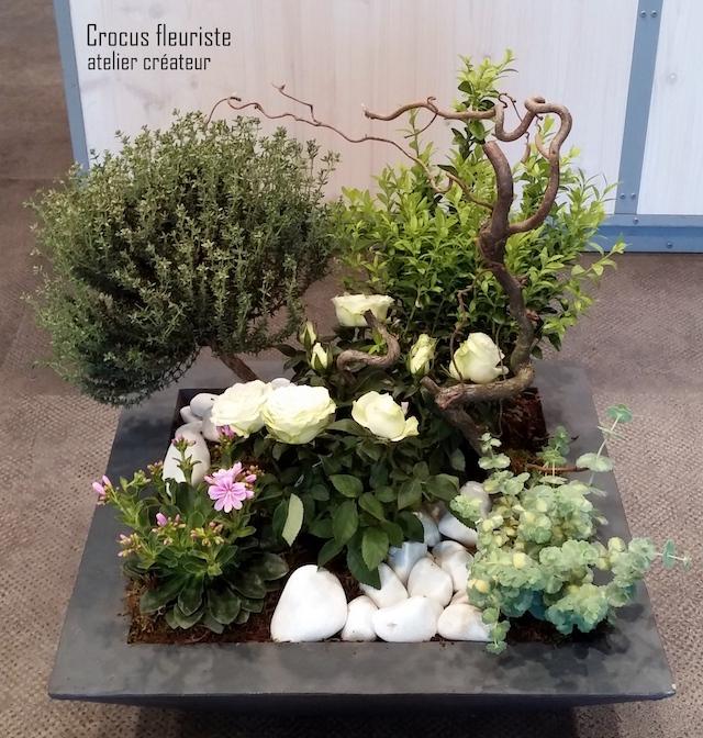 Composition paysagée de plantes vertes et fleuries d'extérieur